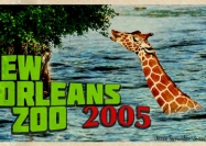 new-orleans-zoo-finished
